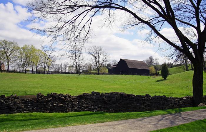 Kentucky Bluegrass Landscape Farmland